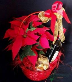 Cesto Natal Vinho