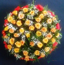 Coroa Redonda - FNB019
